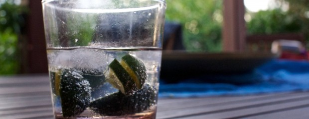 Gin Tonic Balloon Glass (2)