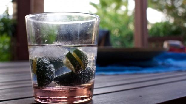 Gin Tonic Balloon Glass (2)